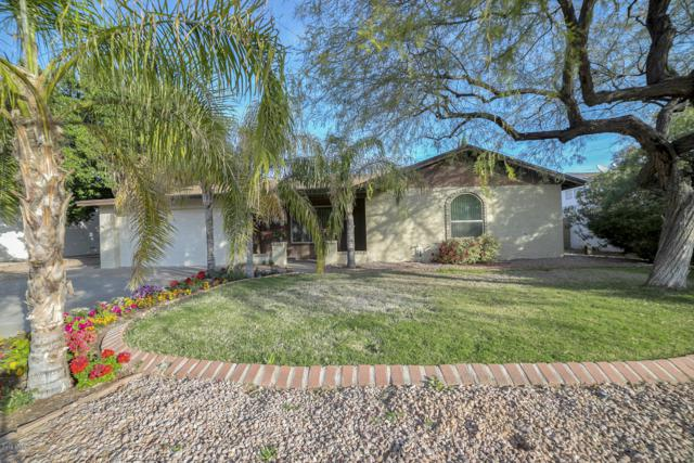 4314 E Alta Mesa Avenue, Phoenix, AZ 85044 (MLS #5860376) :: The Property Partners at eXp Realty