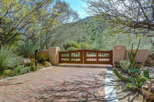 10343 E Pinnacle Peak Road, Scottsdale, AZ 85255 (MLS #5862659) :: CC & Co. Real Estate Team