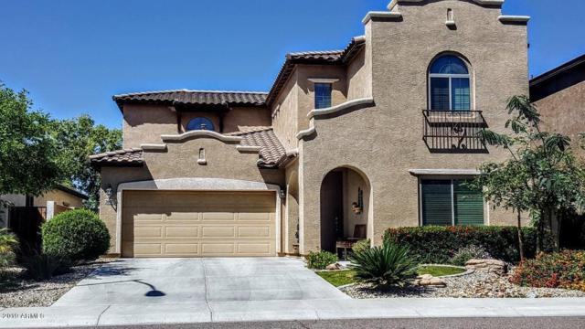 26912 N 55TH Drive, Phoenix, AZ 85083 (MLS #5876210) :: Yost Realty Group at RE/MAX Casa Grande