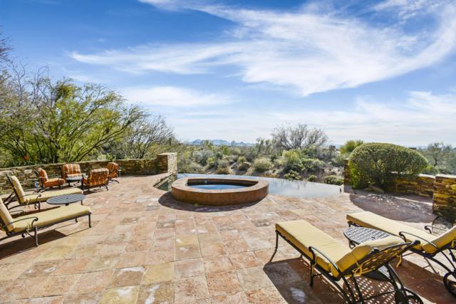 11030 E Purple Aster Way, Scottsdale, AZ 85262 (MLS #5880366) :: CC & Co. Real Estate Team