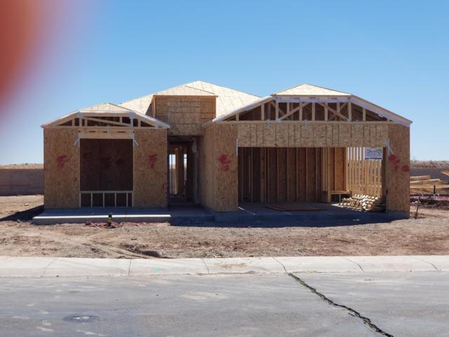 19193 N Piccolo Drive, Maricopa, AZ 85138 (MLS #5886856) :: Revelation Real Estate
