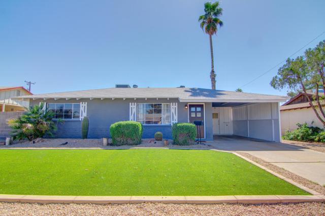 1123 E Las Palmaritas Drive, Phoenix, AZ 85020 (MLS #5887115) :: CC & Co. Real Estate Team