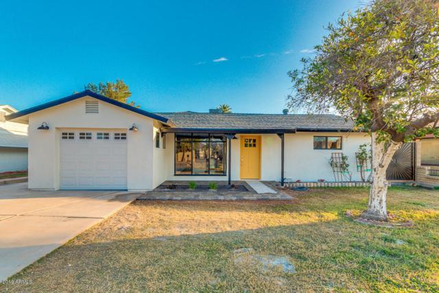 5247 E Windsor Avenue, Phoenix, AZ 85008 (MLS #5890618) :: Yost Realty Group at RE/MAX Casa Grande