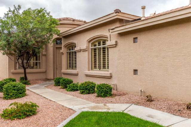 9617 E Champagne Drive, Sun Lakes, AZ 85248 (MLS #5891157) :: Yost Realty Group at RE/MAX Casa Grande