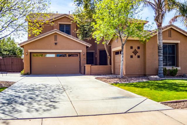 4033 E Megan Court, Gilbert, AZ 85295 (MLS #5893259) :: The Kenny Klaus Team