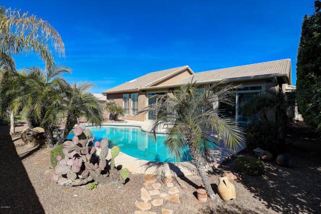 9739 E Sunburst Court, Sun Lakes, AZ 85248 (MLS #5896055) :: Revelation Real Estate