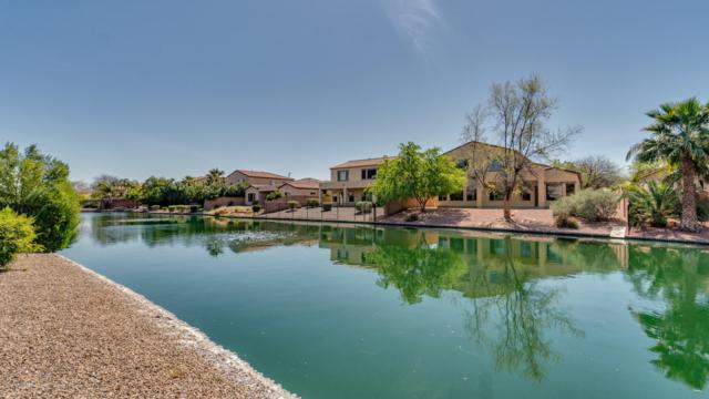 637 E Indian Wells Place, Chandler, AZ 85249 (MLS #5897133) :: CC & Co. Real Estate Team