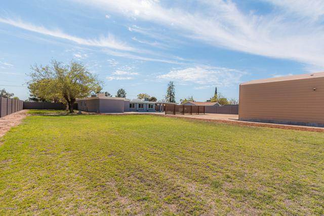 3904 W Westcott Drive, Glendale, AZ 85308 (MLS #5898829) :: Yost Realty Group at RE/MAX Casa Grande