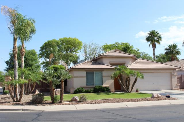 3014 E Winged Foot Drive, Chandler, AZ 85249 (MLS #5914076) :: Revelation Real Estate