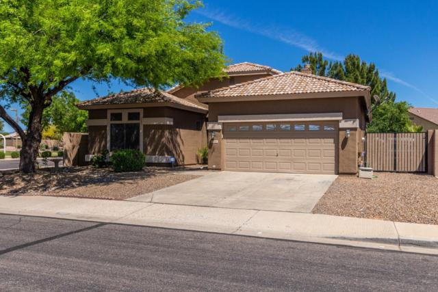 1001 S Canfield, Mesa, AZ 85208 (MLS #5917773) :: The Bill and Cindy Flowers Team