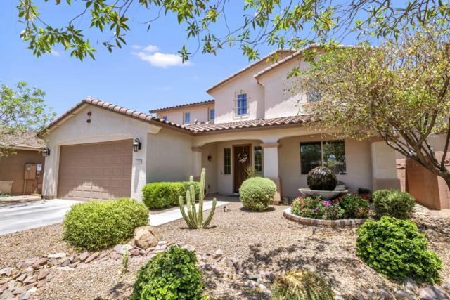 178 W Leatherwood Avenue, Queen Creek, AZ 85140 (MLS #5937961) :: Kepple Real Estate Group