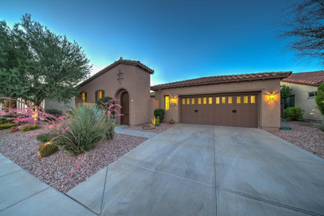 12438 W Maya Way, Peoria, AZ 85383 (MLS #5939025) :: The Daniel Montez Real Estate Group