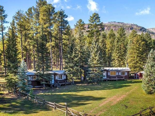 25329 Hwy 191, Alpine, AZ 85920 (MLS #5940693) :: Kepple Real Estate Group