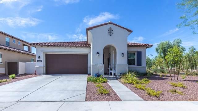 20655 W Legend Trail, Buckeye, AZ 85396 (MLS #5952654) :: CC & Co. Real Estate Team