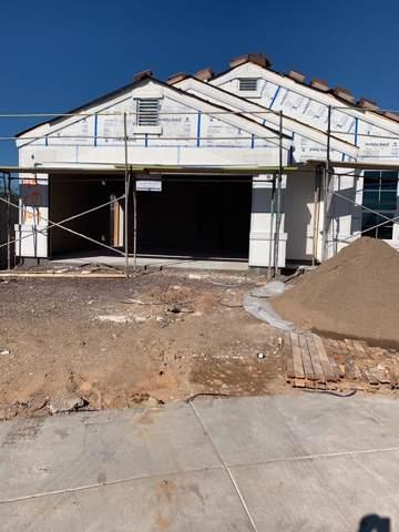 2038 W Yellowbird Lane, Phoenix, AZ 85085 (MLS #5977434) :: The Kenny Klaus Team
