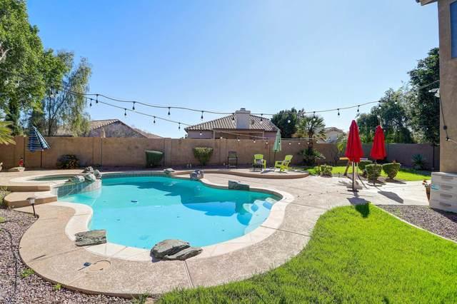 21925 N 70TH Avenue, Glendale, AZ 85310 (MLS #6017456) :: REMAX Professionals