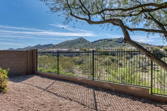 3665 W Aidan Court, Phoenix, AZ 85086 (MLS #6025573) :: Kepple Real Estate Group