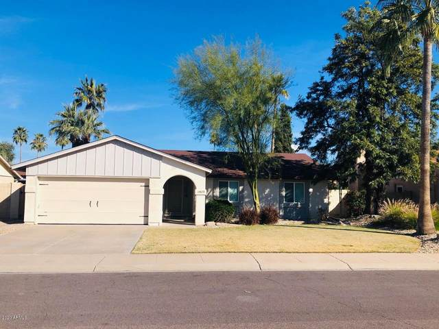 10670 E Becker Lane, Scottsdale, AZ 85259 (MLS #6037054) :: Conway Real Estate