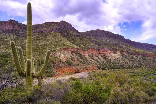 0000 Tara Springs Road, Black Canyon City, AZ 85324 (MLS #6038501) :: Brett Tanner Home Selling Team