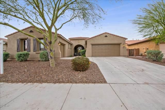 12380 W Palo Brea Lane, Peoria, AZ 85383 (MLS #6044011) :: Howe Realty