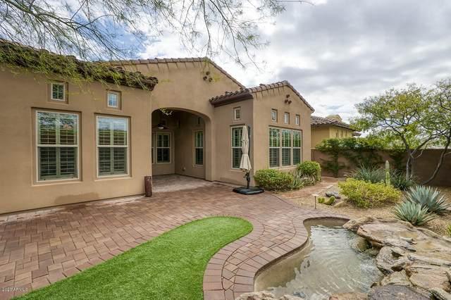 20498 N 98th Place, Scottsdale, AZ 85255 (MLS #6045352) :: Revelation Real Estate