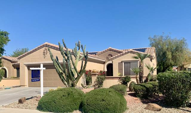 16780 W Desert Blossom Way, Surprise, AZ 85387 (MLS #6046124) :: Brett Tanner Home Selling Team
