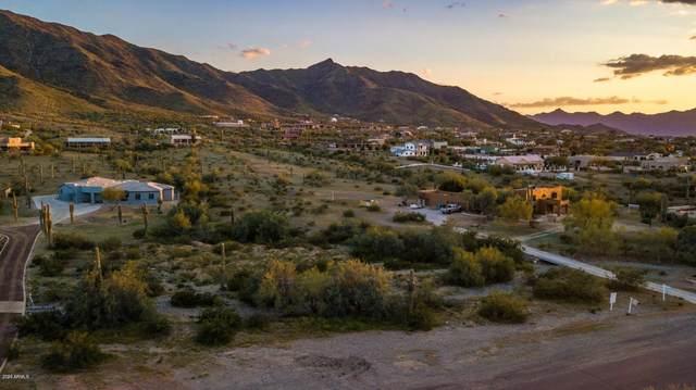 2411 W Olney Avenue, Phoenix, AZ 85041 (MLS #6052282) :: Long Realty West Valley