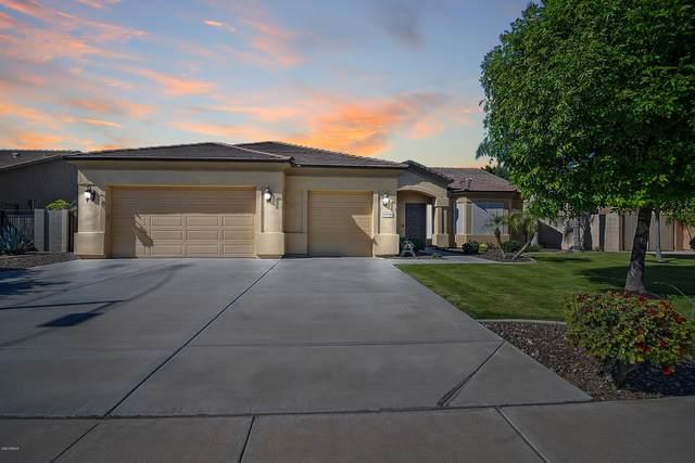 20236 E Appaloosa Drive, Queen Creek, AZ 85142 (MLS #6067285) :: The Bill and Cindy Flowers Team