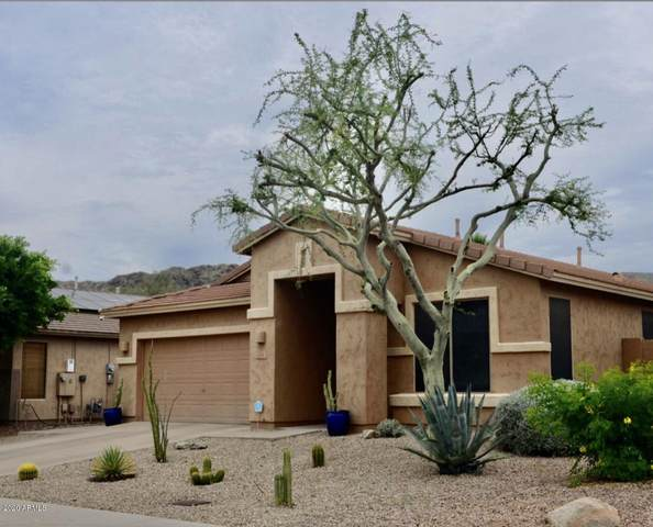 1830 W Glenhaven Drive, Phoenix, AZ 85045 (MLS #6072567) :: The Laughton Team