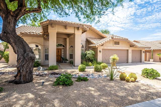 8923 E Palm Tree Drive, Scottsdale, AZ 85255 (MLS #6109694) :: Klaus Team Real Estate Solutions