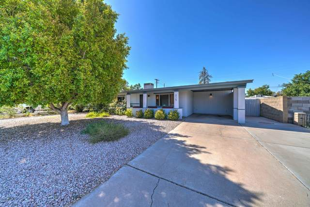 215 W Mclellan Road, Mesa, AZ 85201 (MLS #6113910) :: Riddle Realty Group - Keller Williams Arizona Realty