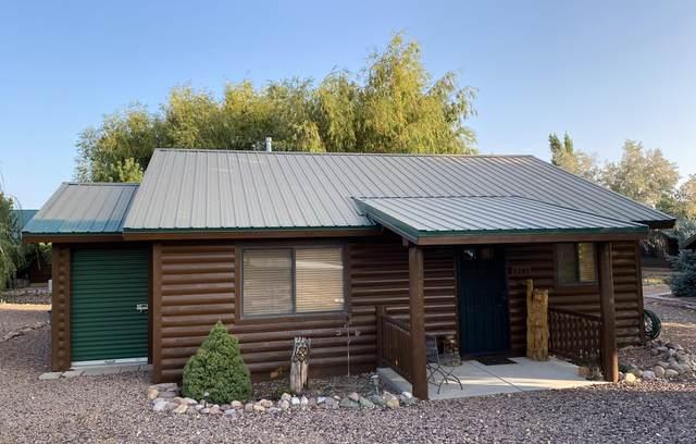 2342 S Buffalo Loop, Overgaard, AZ 85933 (MLS #6135132) :: Brett Tanner Home Selling Team