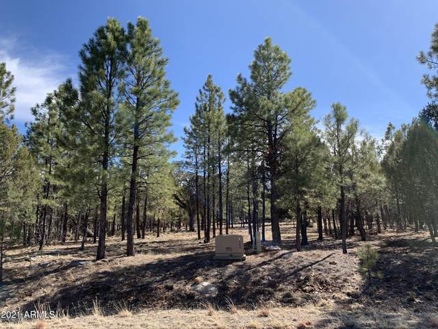 1644 Sugar Pine Drive, Happy Jack, AZ 86024 (MLS #6147771) :: Howe Realty