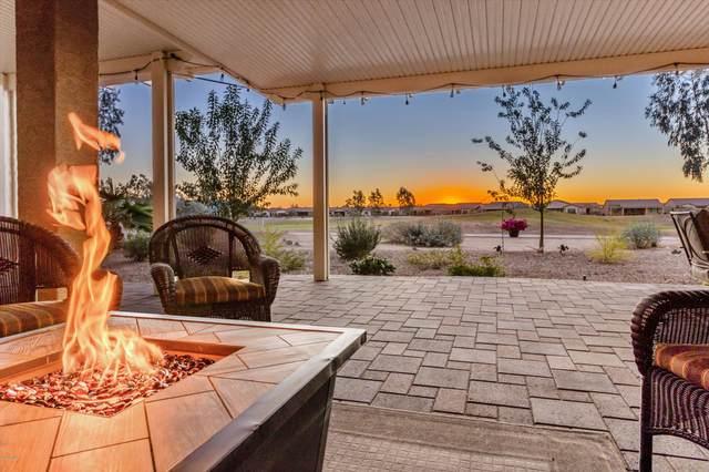 383 N Questa Trail, Casa Grande, AZ 85194 (MLS #6150539) :: Power Realty Group Model Home Center