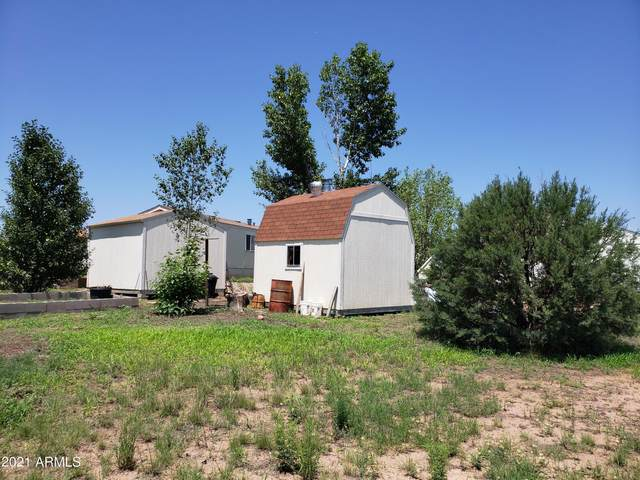 95 E Mail Trail Road, Young, AZ 85554 (MLS #6194794) :: Justin Brown | Venture Real Estate and Investment LLC