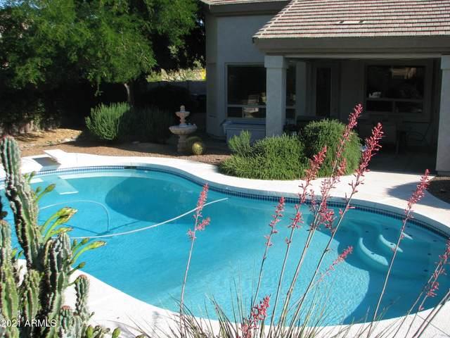6408 E Hearn Road, Scottsdale, AZ 85254 (MLS #6200971) :: My Home Group