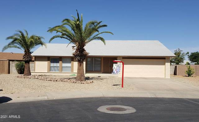 8118 N 105TH Lane, Peoria, AZ 85345 (MLS #6204861) :: Yost Realty Group at RE/MAX Casa Grande