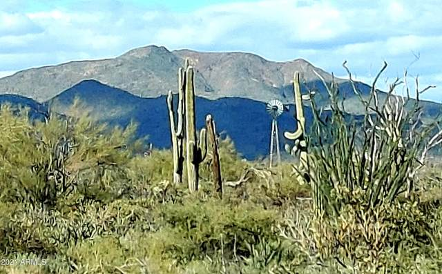 17212 E Whitethorn Drive, Rio Verde, AZ 85263 (MLS #6207895) :: ASAP Realty