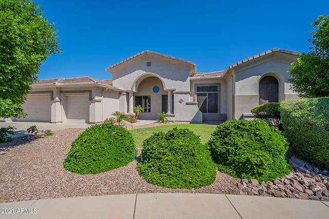 13112 W Rovey Court, Litchfield Park, AZ 85340 (MLS #6208295) :: The Carin Nguyen Team