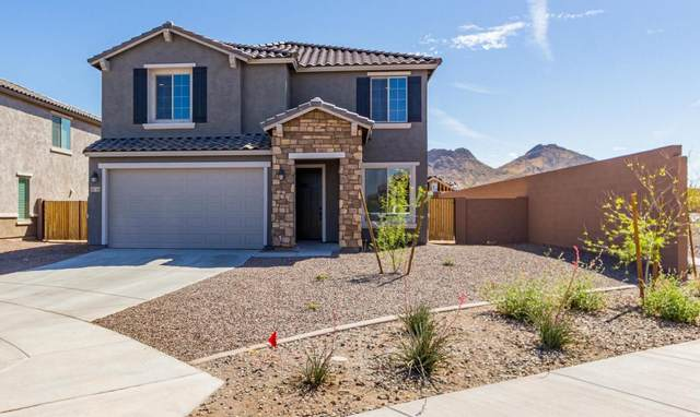 26703 N 70TH Lane, Peoria, AZ 85383 (MLS #6214424) :: Yost Realty Group at RE/MAX Casa Grande
