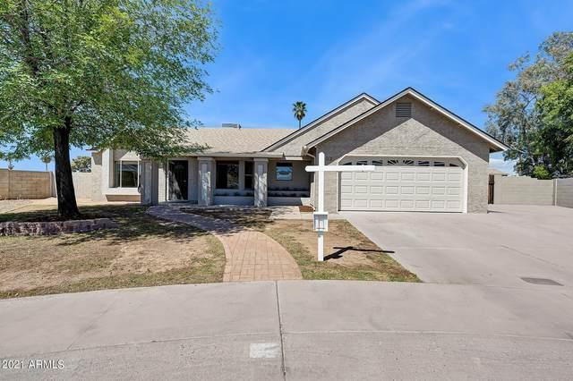 902 E Kerry Lane, Phoenix, AZ 85024 (MLS #6221388) :: The Riddle Group