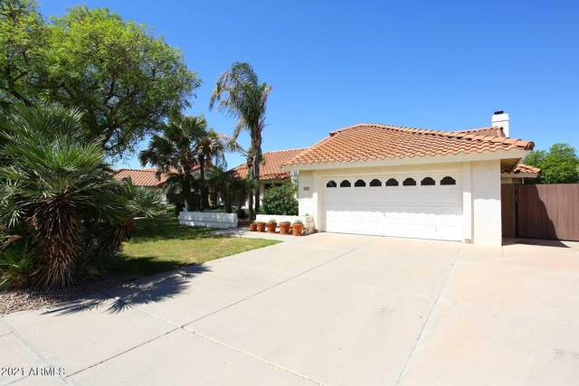 14412 N 9th Street, Phoenix, AZ 85022 (MLS #6226984) :: The Luna Team