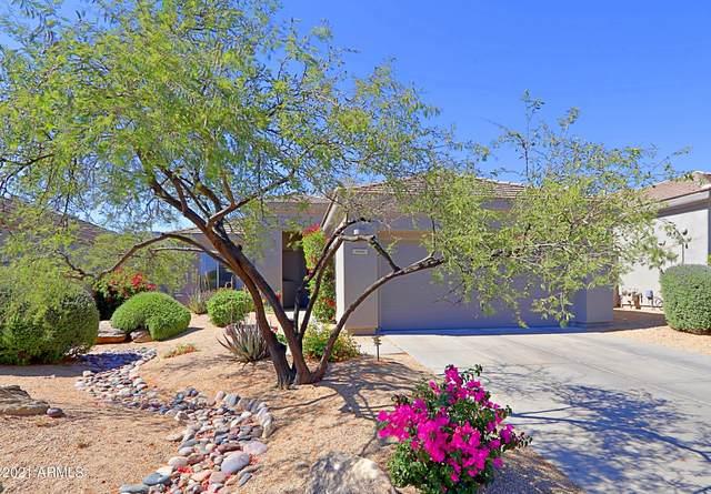 7080 E Whispering Mesquite Trail, Scottsdale, AZ 85266 (MLS #6228919) :: The Riddle Group