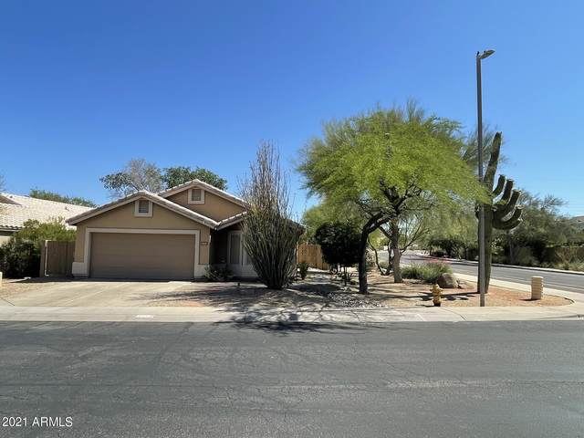31031 N 41ST Street, Cave Creek, AZ 85331 (MLS #6233190) :: Yost Realty Group at RE/MAX Casa Grande