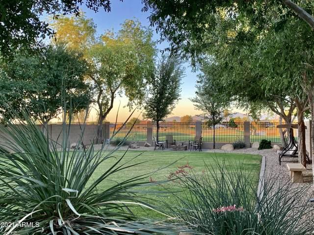 2050 N 144TH Drive, Goodyear, AZ 85395 (MLS #6238780) :: Arizona Home Group