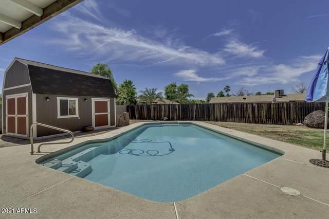 1087 E Senate Circle, Chandler, AZ 85225 (MLS #6245077) :: Yost Realty Group at RE/MAX Casa Grande