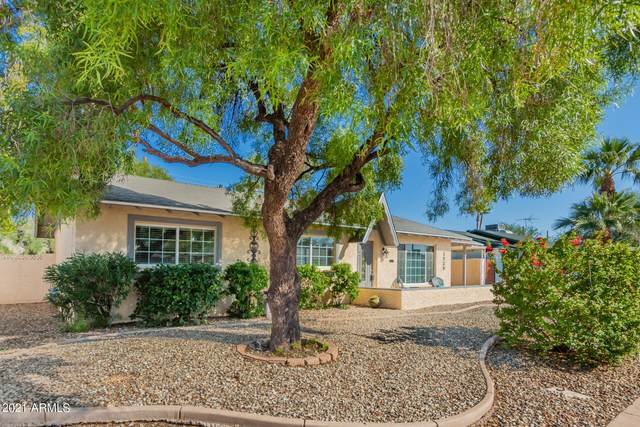 2529 N 86TH Place, Scottsdale, AZ 85257 (MLS #6256834) :: Elite Home Advisors