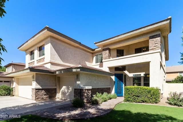 4142 E Park Avenue, Gilbert, AZ 85234 (MLS #6258215) :: Elite Home Advisors