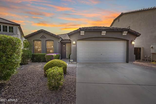 29072 N Yellow Bee Drive, San Tan Valley, AZ 85143 (MLS #6263560) :: Yost Realty Group at RE/MAX Casa Grande