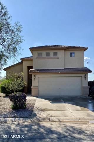 24708 N Shelton Way, Florence, AZ 85132 (MLS #6270156) :: Yost Realty Group at RE/MAX Casa Grande